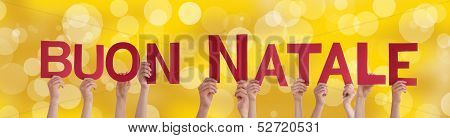 Hands Holding Buon Natale On Golden Background