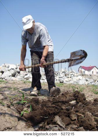 Man Digs Vegetable Garden