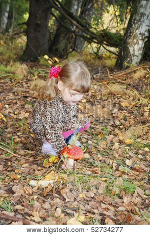 Pretty Little Girl With Bows In Overcoat Disrupts Red Toadstool In Forest.