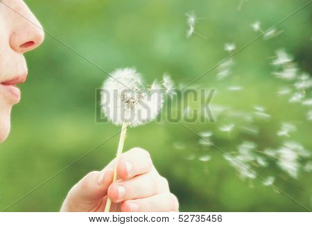 a woman blowing on a dandelion muted colors vintage toned