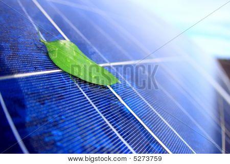 Panel solar con hoja