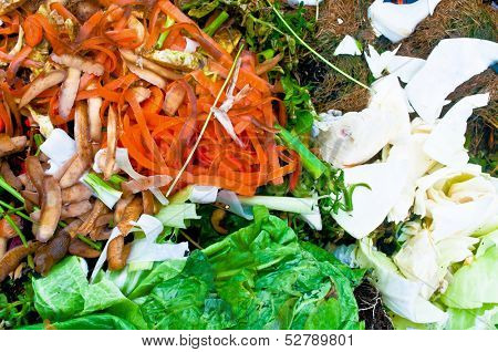 Vegetable residues on a compost bin