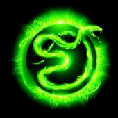 picture of green snake  - Green fire snake in blazing circle on black background - JPG