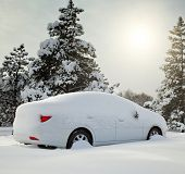 picture of coniferous forest  - car covered with snow in the forest - JPG