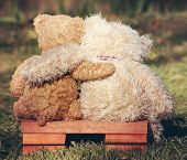 two teddy bears on a bench with arms around each other vintage toned