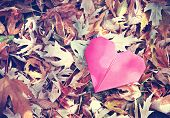 picture of discard  - a discarded paper heart vintage toned - JPG