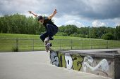 stock photo of skateboarding  - Young Skateboarder doing a Wallie in a skatepark - JPG