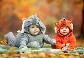 stock photo of twin baby  - Two baby boys dressed in animal costumes in autumn park - JPG