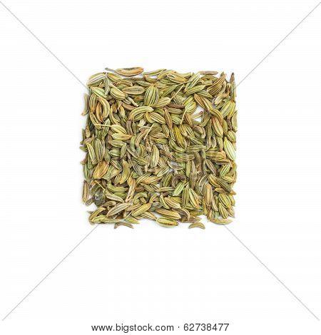 Seasoning Fennel Seeds
