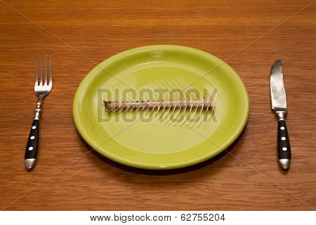 Plate With Fish Bone