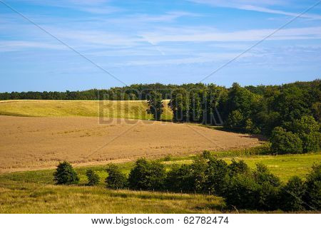 fields and meadows of Scania, Sweden