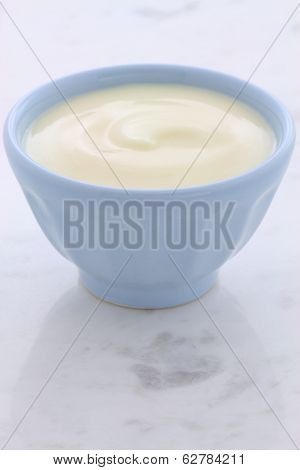 Fresh Plain Yogurt