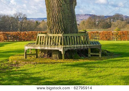 Bench Outdoors