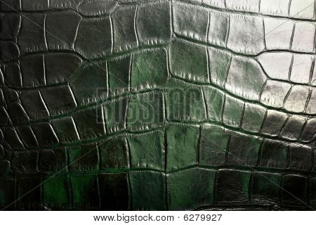 Crocodile Textured Leather