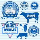 foto of homogeneous  - set of vector icons on the theme of cow - JPG