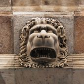 Sculpture Of A Fierce Lion Muzzle