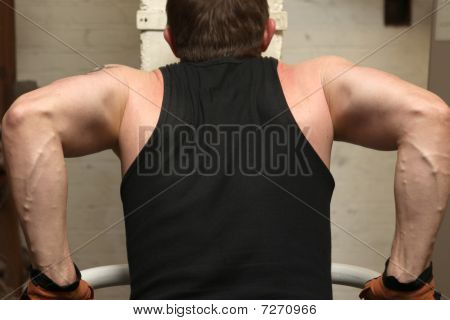 Training Biceps Triceps Gym
