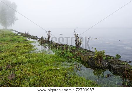 Closeup Of Flooded Grassland On The Banks Of A River
