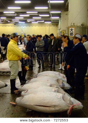 Men haggle over rare blue fin tuna fish on auction in Japan at Tokyo's Tsukiji Fish Market