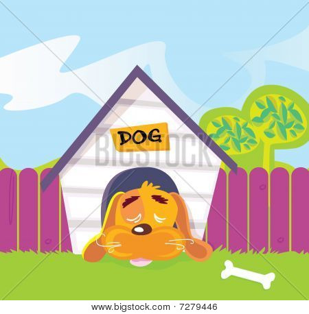 Dog sleeping in dog house