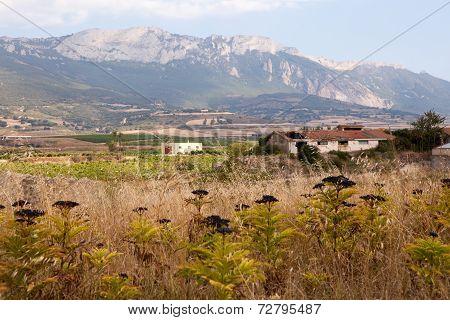 Alavesa Countryside, La Rioja, Spain