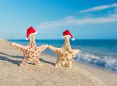 pic of xmas star  - Sea - JPG