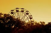 stock photo of ferris-wheel  - Florida State Fair Sunset Ferris Wheel Trees Horizon Skyline - JPG
