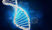 picture of dna  - DNA model - JPG
