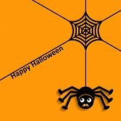 foto of spiderwebs  - Happy halloween with spider web and scary spider - JPG