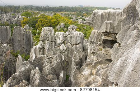 Shi Lin stone forest national park.
