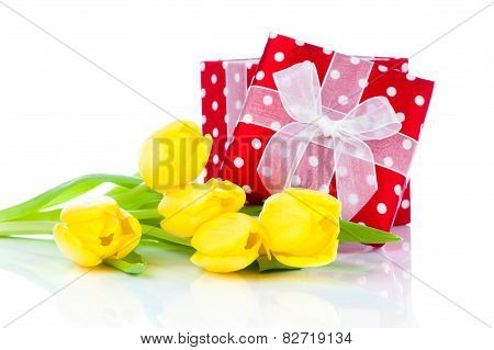 Beautiful Tulips With Red Polka-dot Gift Box. Happy Mothers Day, Romantic Still Life, Fresh Flowers
