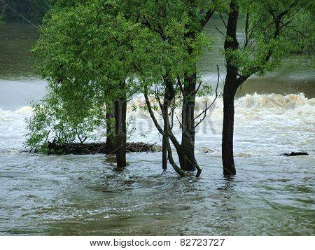 Flood Swollen River