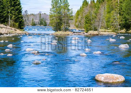 Slowly Flowing River With Plenty Of Rocks
