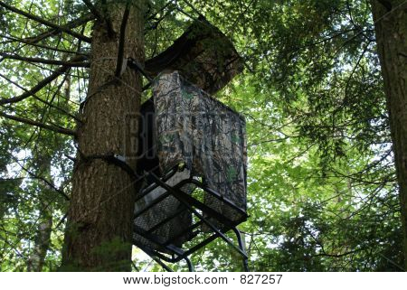 a tree stand