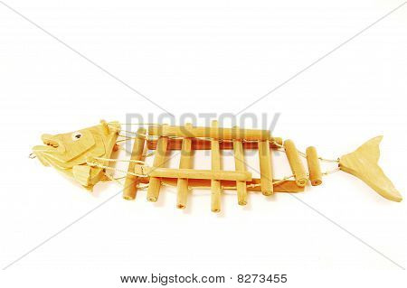 The Wooden Skeleton Of A Fish.