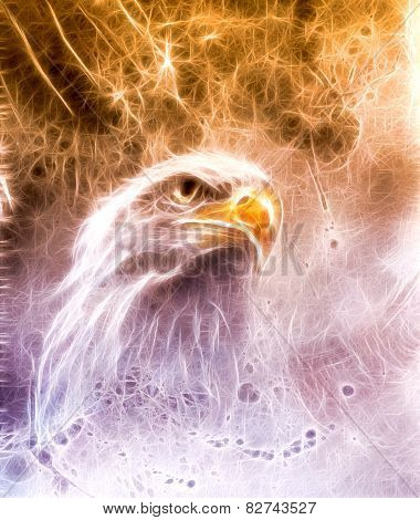 Beautiful Painting Of  Eagle On An Abstract Background Fractal Efect orange with violet efect