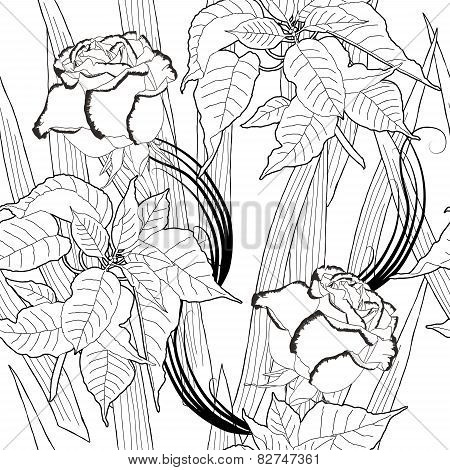 Seamless pattern with black and white poinsettia