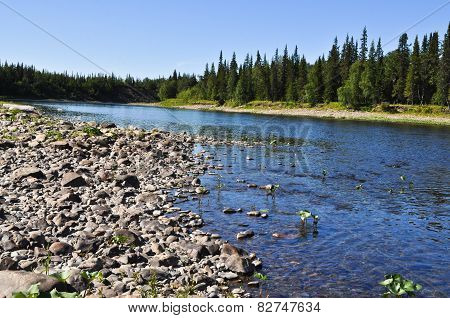 Pebbles On The Banks Of Ural Taiga River.