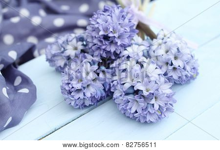 Blue, purple hyacinth on duck egg blue