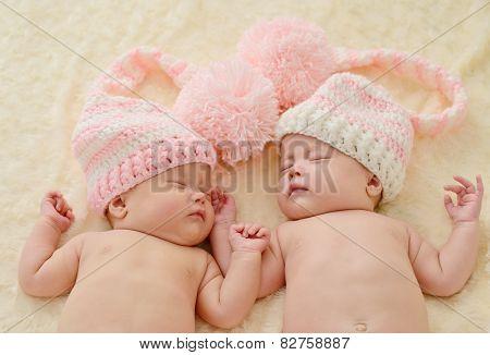 Sleeping Twins