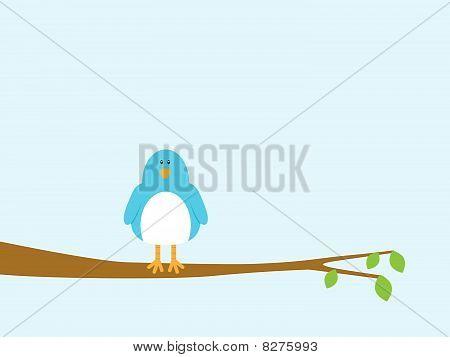 Blue Bird Sitting In A Tree