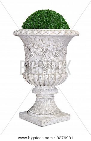Park/garden flowerpot with evergreen plant