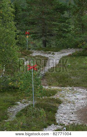 Marked Ski Trail
