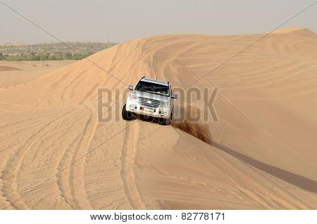 Safari Around Dubai; Uae