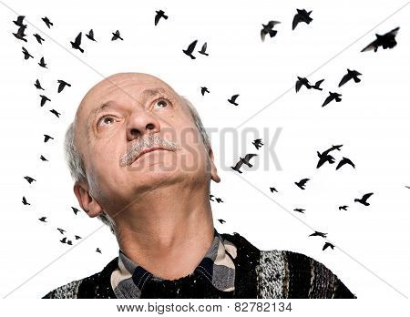 Mature Man Looking Up On Flying Birds