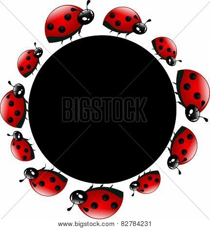 Ladybugs Circle