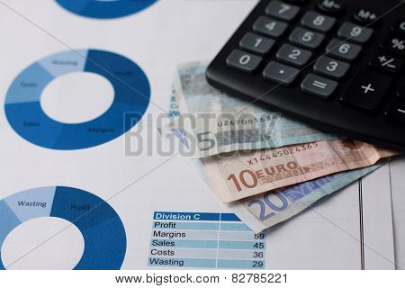 Euro Bills Placed On Paper Sheets With Pie Charts