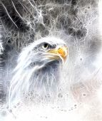 stock photo of airbrush  - beautiful airbrush painting of eagle on an abstract background one stretching his black wings to fly on abstract background - JPG