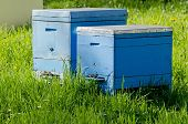 picture of bee-hive  - Agricultural landscape  - JPG
