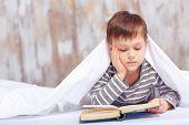picture of bookworm  - Intelligent little bookworm - JPG